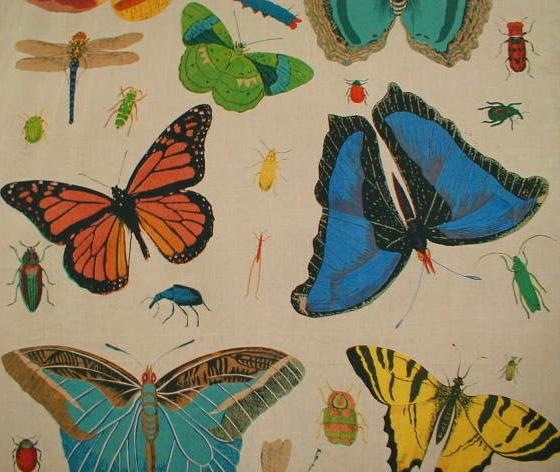 wpid-homefabricsbutterfly1a-2011-03-7-08-14.jpg