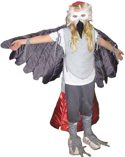 wpid-bird_costume_front_sm-2011-06-4-14-26.jpg