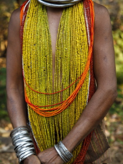 wpid-kimberley-coole-details-from-traditional-dress-of-tribal-bonda-woman-2011-11-4-21-48.jpg