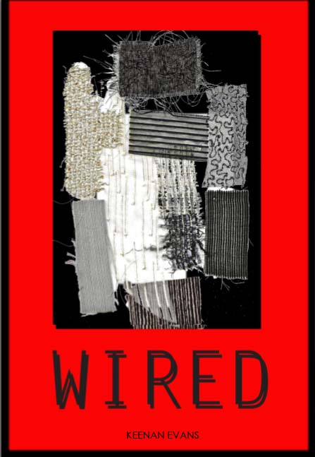 wpid-wired-keenanevans-2011-11-10-09-29.jpg