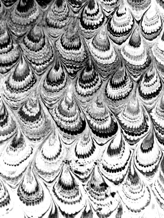 wpid-ebruprint8-2012-01-21-17-36