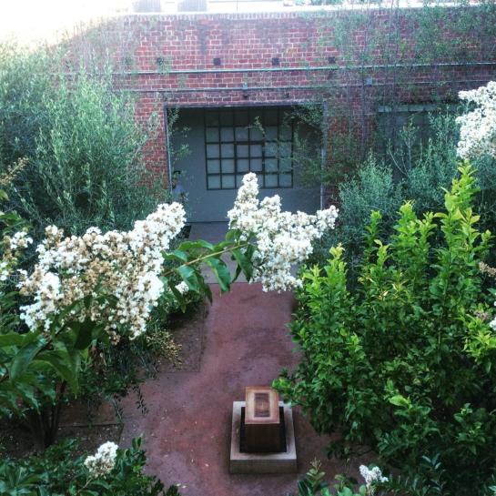 keenan evans - interior home inspiration - plant - landscaping